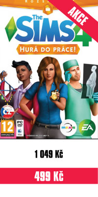 THE-SIMS-GET-TO-WORK-PC.jpg
